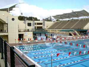Best Places To Go Swimming In The San Francisco Bay Area
