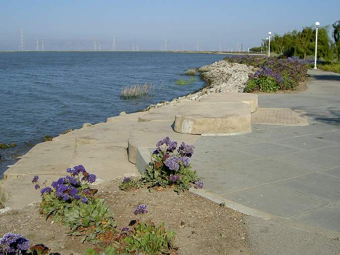 Bay Trail, Pacific Shores Center, Redwood City