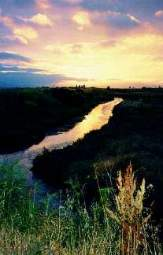 San Leandro Marsh at sunset