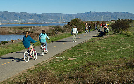 Bay Trail in Shoreline at Mountain View Park